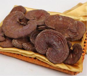 Nấm linh chi đỏ Hàn Quốc - sản phẩm tốt cho người yếu sinh lý