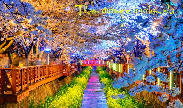 thu-tuc-xin-visa-thuong-nghiep-di-han-quoc