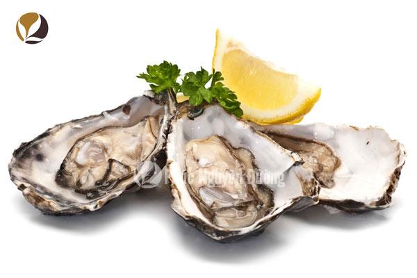 Các món ăn chế biến từ con hàu biển
