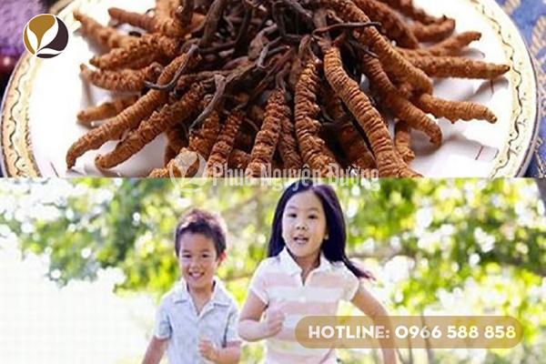 Trẻ em là đối tượng không nên dùng đông trùng hạ thảo