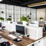 Nội thất và cách bố trí dành cho văn phòng mở